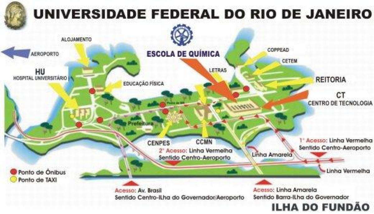 連邦大学ブラジル-リオデジャネ...